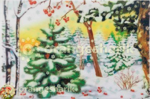 Печать на велкро Зимний лес